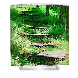 Shower Curtain featuring the photograph Stairway To Heaven by Donna Bentley