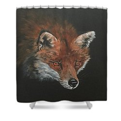 Red Fox In Stalking Mode Shower Curtain
