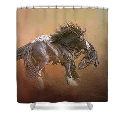 Stallion Play Shower Curtain