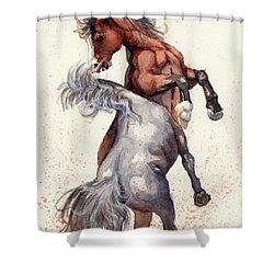 Stallion Showdown Shower Curtain