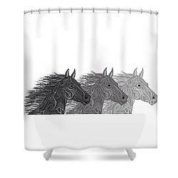 Shower Curtain featuring the drawing Stallions Shades by Nick Gustafson