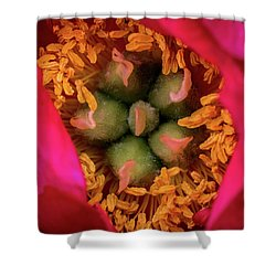 Stamen And Pistils Shower Curtain