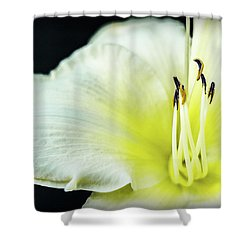 Stamen At Attention Shower Curtain