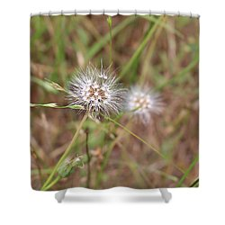 Shower Curtain featuring the photograph Stand Back by Marie Neder