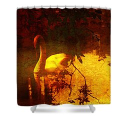 Stand By  Me  Shower Curtain by Andrew Hunter
