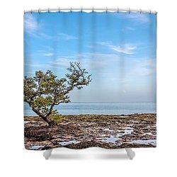 Stand Ffirm Shower Curtain