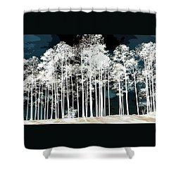 Stand Of Trees At Lake Shower Curtain