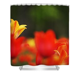 Stand Out In The Crowd Shower Curtain