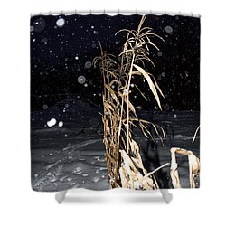 Stand Tall Shower Curtain by Annette Berglund
