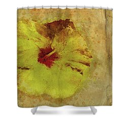 Stand The Test Of Time Shower Curtain