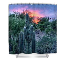 Stand Up And Be Counted Shower Curtain