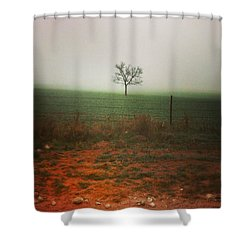 Shower Curtain featuring the photograph Standing Alone, A Lone Tree In The Fog. by Shelli Fitzpatrick