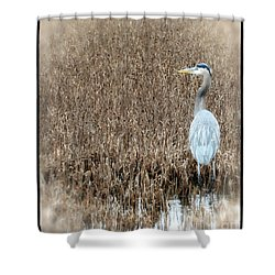Standing Alone Shower Curtain by Tamera James