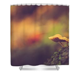 Standing At The Edge Shower Curtain by Shane Holsclaw