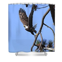 Shower Curtain featuring the photograph Standing Eagle by Geraldine DeBoer