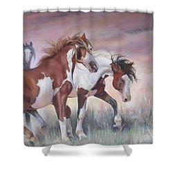 Standing Ground Shower Curtain