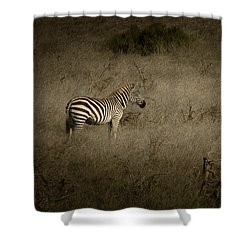 Standing In The Light Shower Curtain by Roger Mullenhour