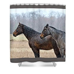 Shower Curtain featuring the photograph Standing In The Rain 1281 by Michael Peychich