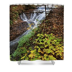 Shower Curtain featuring the photograph Standing On The Edge by Dale Kincaid