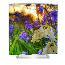 Standing Out Shower Curtain by Isabella F Abbie Shores FRSA