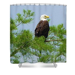 Standing Proud Shower Curtain by Kimo Fernandez