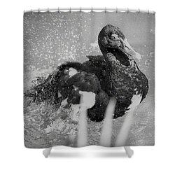 Standing Proud Shower Curtain