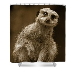 Standing Sentry Shower Curtain