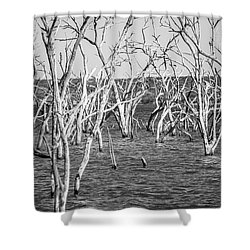 Standing Still Shower Curtain