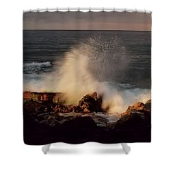 Shower Curtain featuring the photograph Standing Strong by Pamela Walton