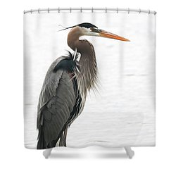 Standing Tall Shower Curtain by Anita Oakley