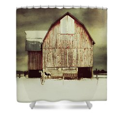 Standing Tall Shower Curtain by Julie Hamilton