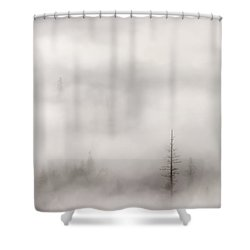 Standing Tall Shower Curtain by Mike  Dawson