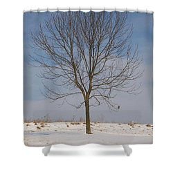 Shower Curtain featuring the photograph Standing Tall by Sara  Raber