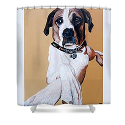 Shower Curtain featuring the painting Stanley by Tom Roderick
