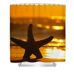 Shower Curtain featuring the photograph Star Bokeh by Nikki McInnes