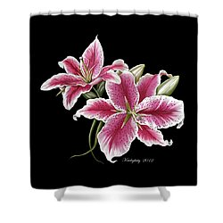 Star Gazer Lillies Shower Curtain