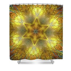 Star Kaleidoscope Shower Curtain