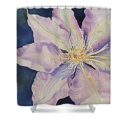 Star Shine Shower Curtain