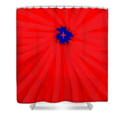 Starburst 2' By Sumi E Master Linda Velasquez Shower Curtain