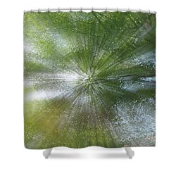 Starburst Shower Curtain by Dennis Baswell