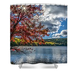 Starburst Tree @ Silvermine Lake Shower Curtain by Angelo Marcialis