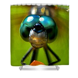 Shower Curtain featuring the photograph Stare Down With A Dragonfly 001 by George Bostian