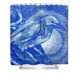 Stare Of A Crow At Night Shower Curtain