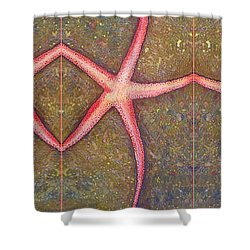 Starfish Pattern Bar Shower Curtain