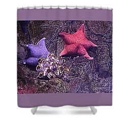 Starfish Pink Starfish Blue Shower Curtain by Richard W Linford
