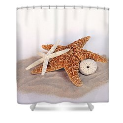 Starfish Still Life Shower Curtain