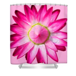Starflower Opening  Mandala Shower Curtain