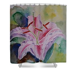 Stargazer Lily Watercolor Still Life Gift  Shower Curtain by Geeta Biswas