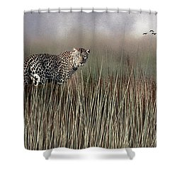 Shower Curtain featuring the photograph Staring Back by Diane Schuster