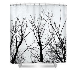 Stark Silhouettes Shower Curtain